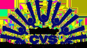 DudleyCVS logo